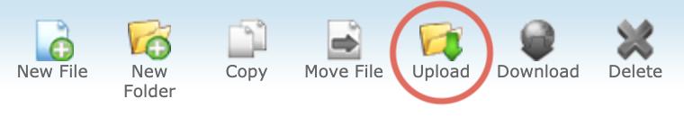 Add Syntax Highlighting to WordPress cPanel Upload