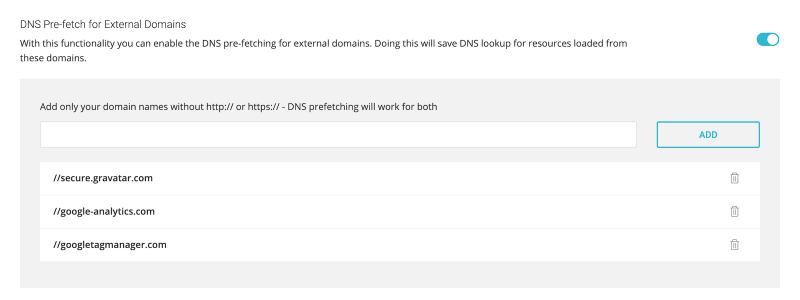 SG Optimizer DNS Pre-fetch for External Domains Settings