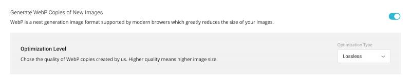 Best SG Optimizer Settings Generate WebP Copies of New Images Lossless Optimization Enabled