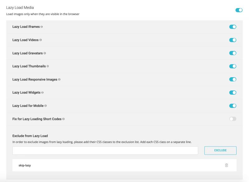 Best SG Optimizer Settings Lazy Load Media Options