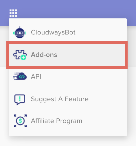 Cloudways Add-Ons Menu Option